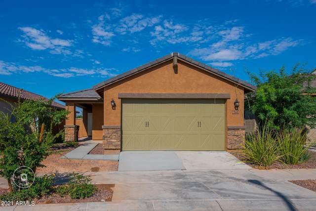 13160 N 144TH Lane, Surprise, AZ 85379 (MLS #6271102) :: Yost Realty Group at RE/MAX Casa Grande