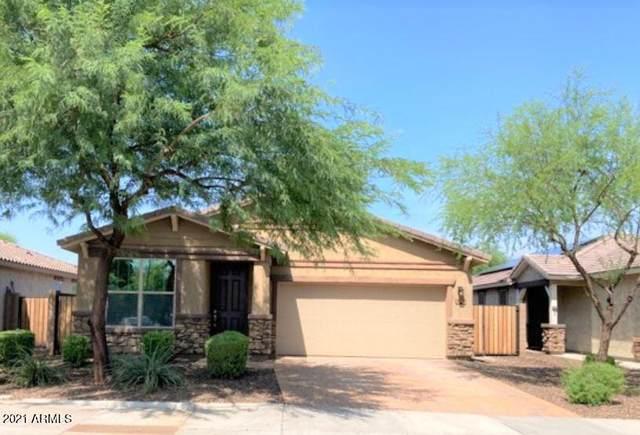 2570 S Loren Lane, Gilbert, AZ 85295 (MLS #6271127) :: Long Realty West Valley