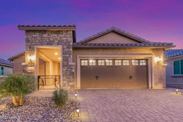 4124 N Spyglass Court, Florence, AZ 85132 (MLS #6271132) :: Kepple Real Estate Group