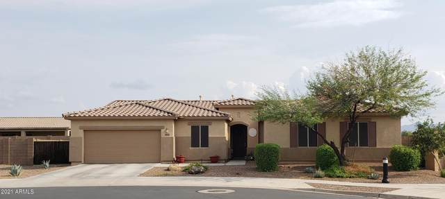 5647 W Wayland Drive, Laveen, AZ 85339 (MLS #6271148) :: CANAM Realty Group
