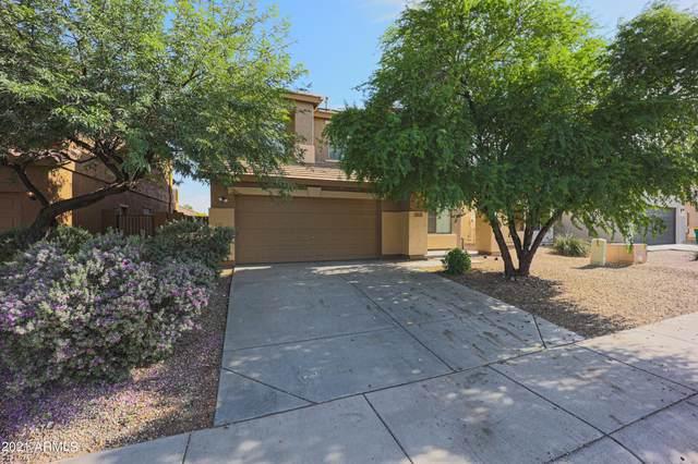 18135 W Sanna Street, Waddell, AZ 85355 (MLS #6271163) :: Keller Williams Realty Phoenix