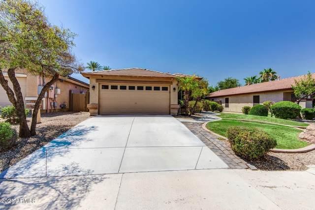 11007 W Loma Lane, Peoria, AZ 85345 (MLS #6271190) :: Keller Williams Realty Phoenix