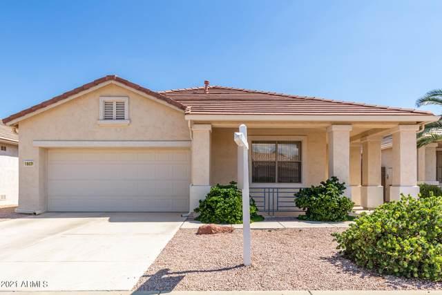 18031 W Udall Drive, Surprise, AZ 85374 (MLS #6271221) :: Kepple Real Estate Group