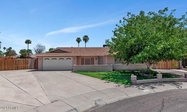 8523 N 40TH Drive, Phoenix, AZ 85051 (MLS #6271249) :: The Copa Team   The Maricopa Real Estate Company