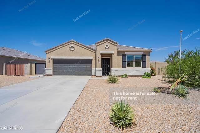 11224 E Sunflower Court, Florence, AZ 85132 (MLS #6271292) :: Keller Williams Realty Phoenix