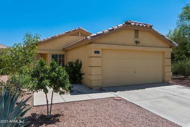 12923 N Palm Street, El Mirage, AZ 85335 (MLS #6271311) :: Synergy Real Estate Partners