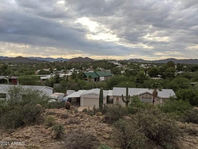 114 S Piedra Negra Drive, Queen Valley, AZ 85118 (MLS #6271324) :: Fred Delgado Real Estate Group
