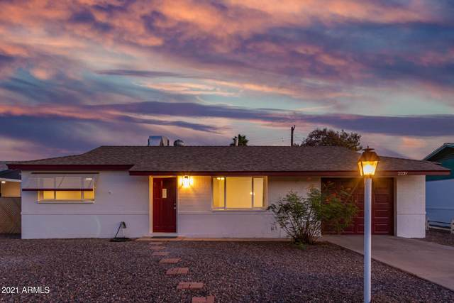 2239 E Birchwood Avenue, Mesa, AZ 85204 (MLS #6271334) :: Kepple Real Estate Group