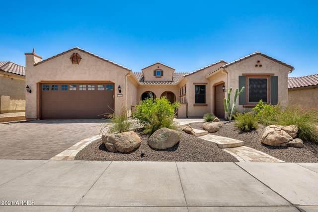 26855 W Oraibi Drive, Buckeye, AZ 85396 (MLS #6271345) :: The Copa Team | The Maricopa Real Estate Company