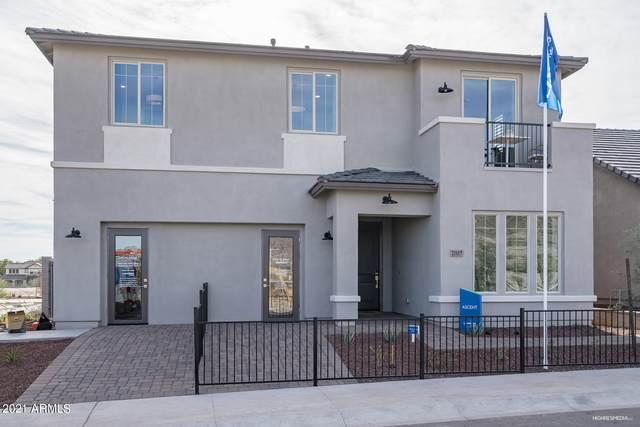 21117 W Hillcrest Boulevard, Buckeye, AZ 85396 (MLS #6271362) :: The Riddle Group