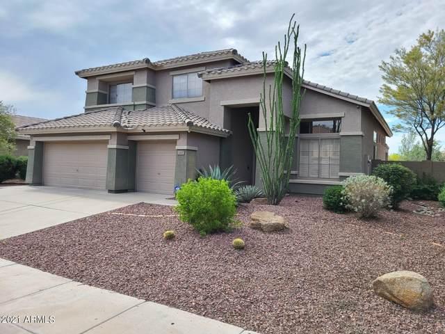 3207 W Morse Drive, Phoenix, AZ 85086 (MLS #6271364) :: Conway Real Estate