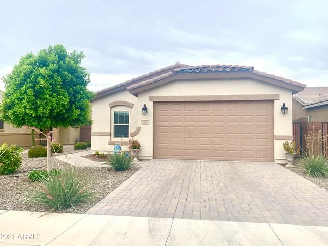 904 W Sisso Tree Avenue, San Tan Valley, AZ 85140 (MLS #6271376) :: Zolin Group