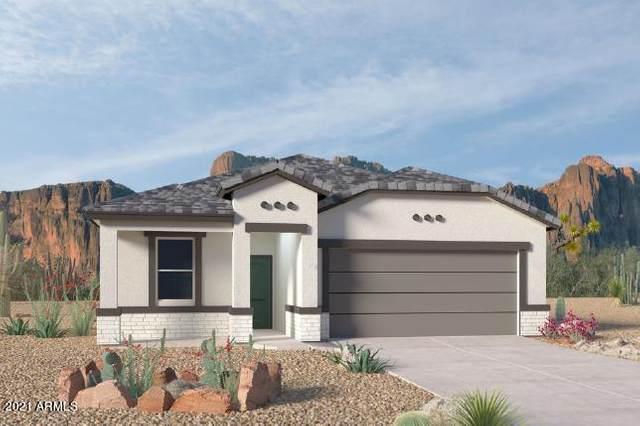 3583 N Montoya Lane, Casa Grande, AZ 85122 (MLS #6271379) :: Yost Realty Group at RE/MAX Casa Grande