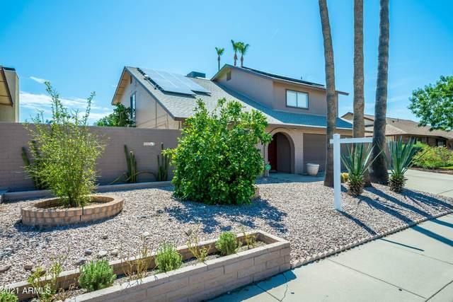 2315 S Elm Street, Mesa, AZ 85202 (MLS #6271393) :: Executive Realty Advisors