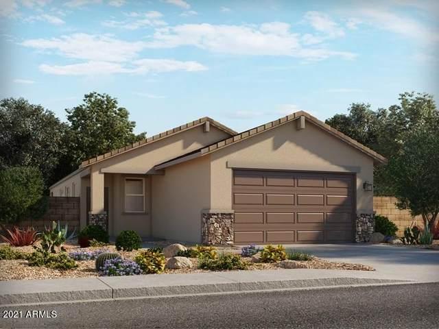 37001 N Addison Lane, San Tan Valley, AZ 85140 (MLS #6271436) :: Yost Realty Group at RE/MAX Casa Grande