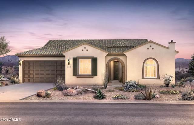 19215 N 259TH Avenue, Buckeye, AZ 85396 (MLS #6271437) :: The Garcia Group