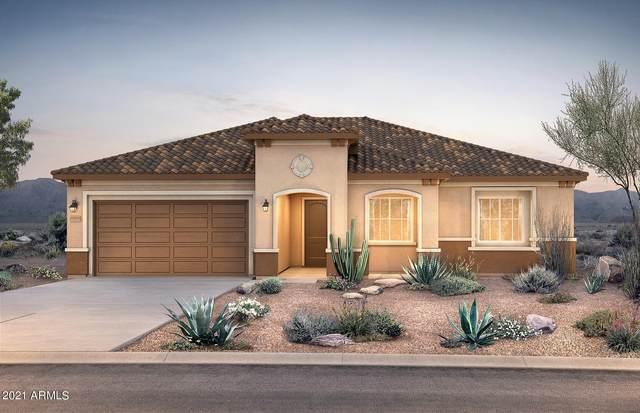 26632 W Quail Avenue, Buckeye, AZ 85396 (MLS #6271449) :: The Garcia Group