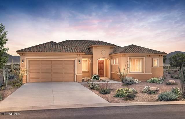 25913 W Mcrae Drive, Buckeye, AZ 85396 (MLS #6271484) :: The Garcia Group