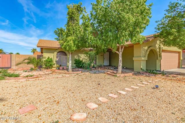 17817 N 42ND Drive, Glendale, AZ 85308 (MLS #6271513) :: Yost Realty Group at RE/MAX Casa Grande