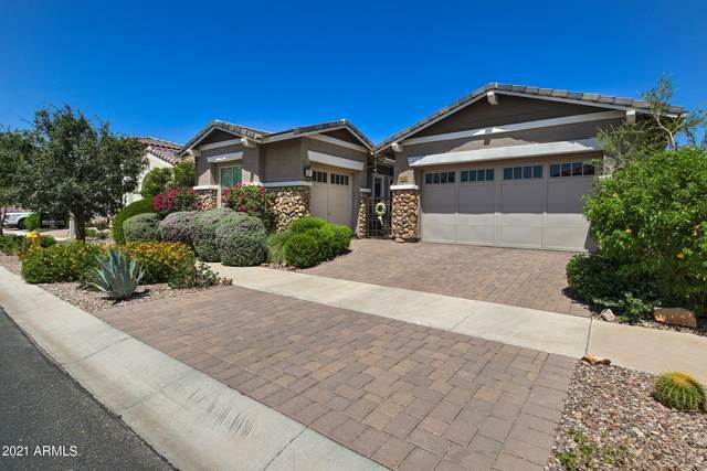 10202 E Bergeron Avenue, Mesa, AZ 85212 (MLS #6271523) :: Yost Realty Group at RE/MAX Casa Grande