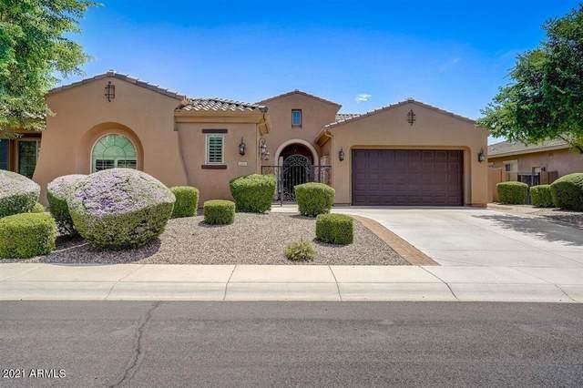 5471 S Big Horn Place, Chandler, AZ 85249 (MLS #6271594) :: Yost Realty Group at RE/MAX Casa Grande
