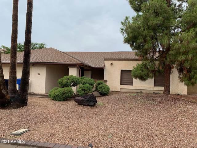 607 W Summit Place, Chandler, AZ 85225 (MLS #6271615) :: The Garcia Group