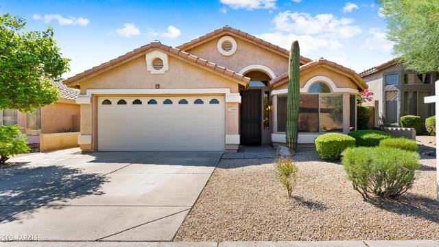 15280 N 102ND Street, Scottsdale, AZ 85255 (MLS #6271620) :: Long Realty West Valley