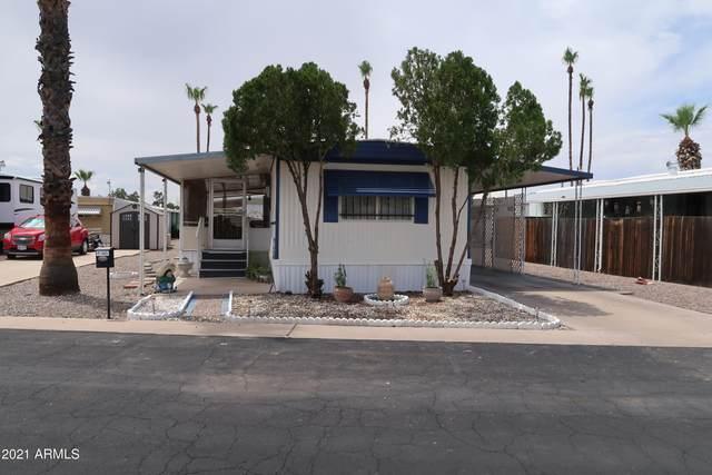 7300 N 51ST Avenue F149, Glendale, AZ 85301 (MLS #6271625) :: The Garcia Group