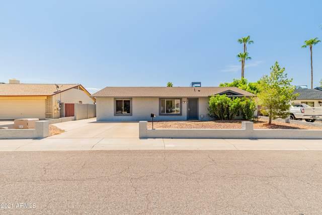 3319 E Campo Bello Drive, Phoenix, AZ 85032 (MLS #6271652) :: Yost Realty Group at RE/MAX Casa Grande