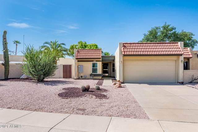 2519 E Villa Maria Drive, Phoenix, AZ 85032 (MLS #6271681) :: The Laughton Team