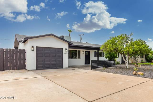 3603 N Navajo Trail, Scottsdale, AZ 85251 (MLS #6271710) :: The Copa Team   The Maricopa Real Estate Company