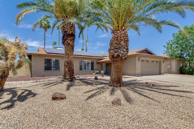 5336 W Alice Avenue, Glendale, AZ 85302 (MLS #6271711) :: Keller Williams Realty Phoenix