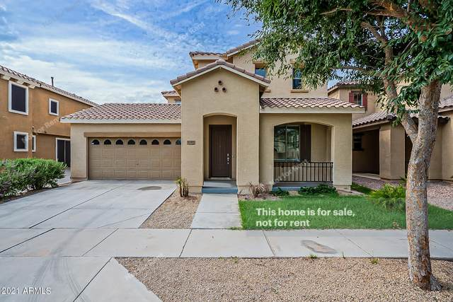 3277 E Carla Vista Drive, Gilbert, AZ 85295 (MLS #6271746) :: Keller Williams Realty Phoenix