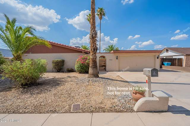 3826 W Sahuaro Drive, Phoenix, AZ 85029 (MLS #6271751) :: Yost Realty Group at RE/MAX Casa Grande