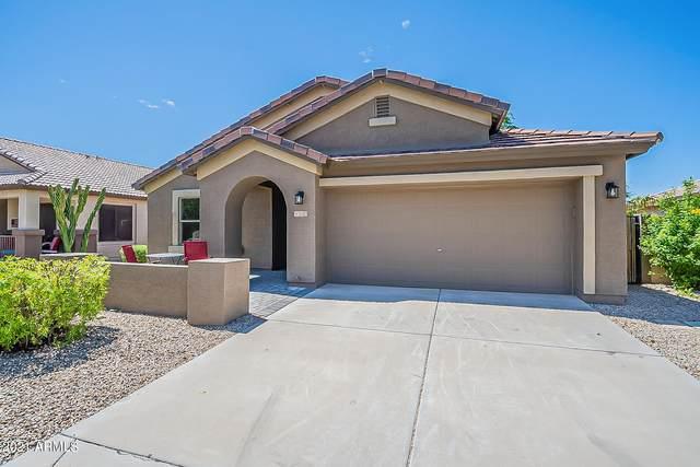 21303 E Via Del Palo, Queen Creek, AZ 85142 (MLS #6271774) :: Keller Williams Realty Phoenix