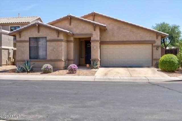 9223 E Keats Avenue, Mesa, AZ 85209 (MLS #6271780) :: Yost Realty Group at RE/MAX Casa Grande