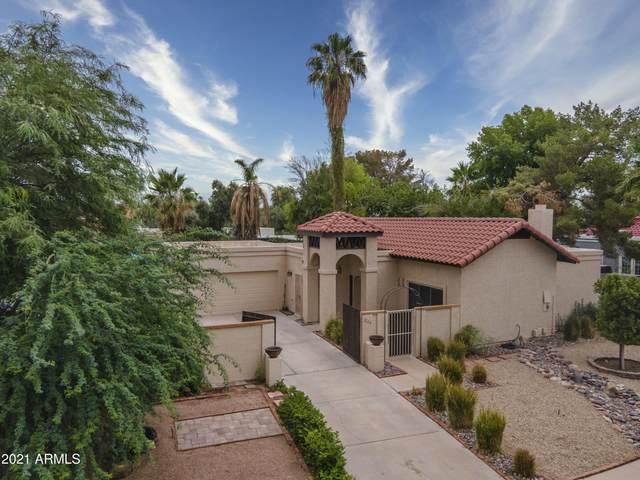 536 E Glencove Street, Mesa, AZ 85203 (MLS #6271805) :: Power Realty Group Model Home Center