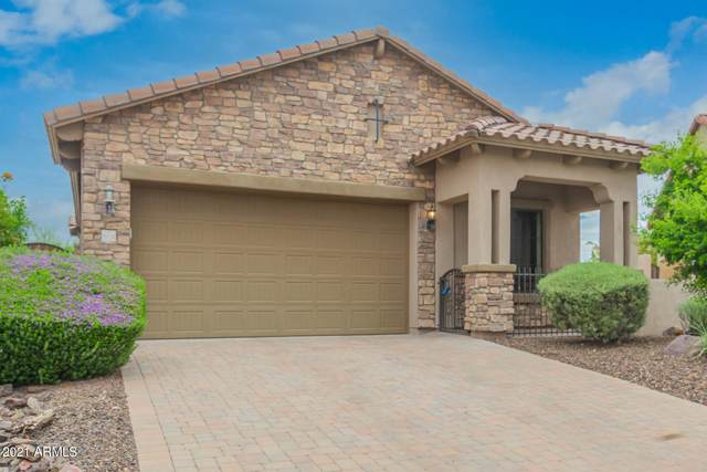 8824 E Ivy Circle, Mesa, AZ 85207 (MLS #6271830) :: Scott Gaertner Group
