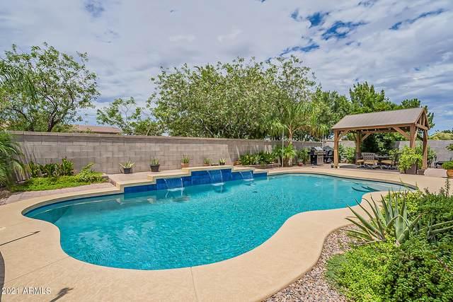 41070 N Eliana Drive, Queen Creek, AZ 85140 (MLS #6271863) :: Yost Realty Group at RE/MAX Casa Grande