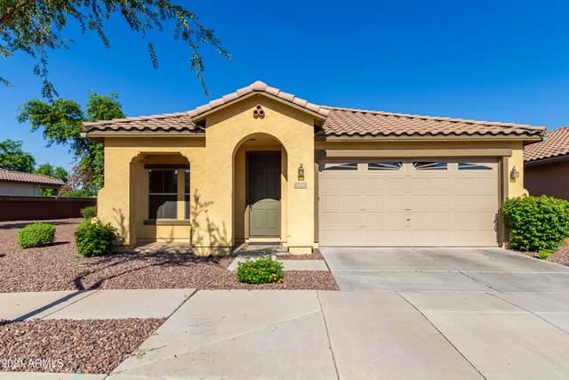 1112 S Olympic Drive, Gilbert, AZ 85296 (MLS #6271880) :: Keller Williams Realty Phoenix