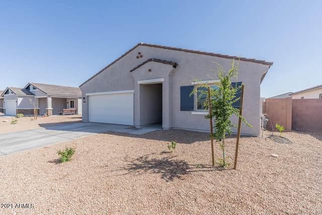 46011 W Mountain View Road, Maricopa, AZ 85139 (MLS #6271886) :: The Ethridge Team
