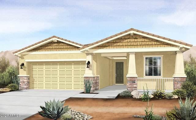 4807 S 117TH Avenue, Avondale, AZ 85323 (MLS #6271928) :: Scott Gaertner Group