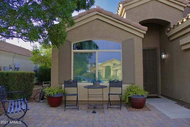 16068 W Vogel Avenue, Goodyear, AZ 85338 (MLS #6271930) :: Yost Realty Group at RE/MAX Casa Grande