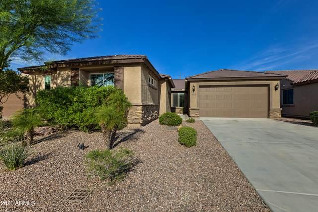 26025 N 107TH Drive, Peoria, AZ 85383 (MLS #6271950) :: Yost Realty Group at RE/MAX Casa Grande
