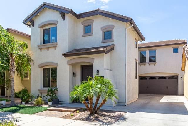 19117 E Kingbird Drive, Queen Creek, AZ 85142 (MLS #6271979) :: Yost Realty Group at RE/MAX Casa Grande