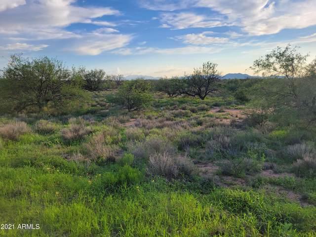 TBD W Horse Ride Loop, Benson, AZ 85602 (MLS #6271987) :: Howe Realty