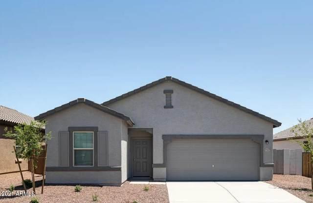 8244 S 66th Avenue, Laveen, AZ 85339 (MLS #6271989) :: Klaus Team Real Estate Solutions