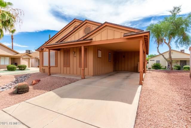 6582 S Lake Forest Drive, Chandler, AZ 85249 (MLS #6272008) :: Yost Realty Group at RE/MAX Casa Grande