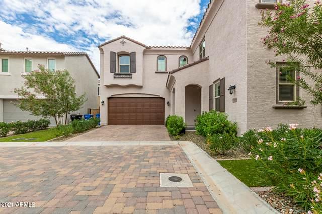 17219 N 10TH Street, Phoenix, AZ 85022 (MLS #6272015) :: Yost Realty Group at RE/MAX Casa Grande