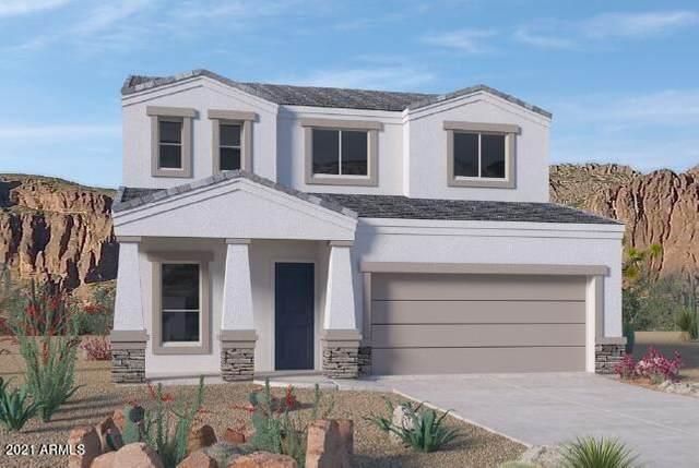 24212 N 20th Place, Phoenix, AZ 85024 (MLS #6272021) :: Yost Realty Group at RE/MAX Casa Grande